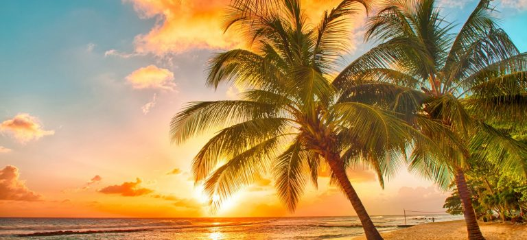 Why Top School Travel Companies Offer Trips To Barbados